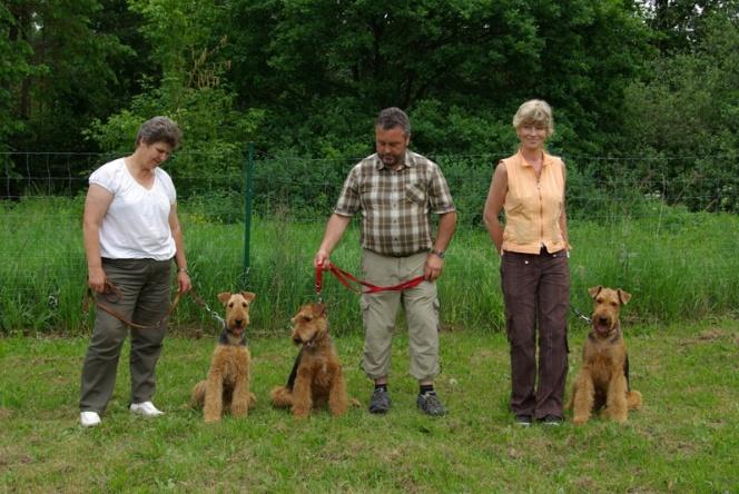 Die Wurfgeschwister müssen für den Fotografen noch einmal brav sitzen. Von links , Corana, Calka und Cliff.