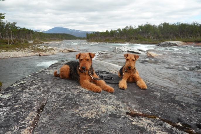 Ivo und Cliff als Urlauber in Norwegen