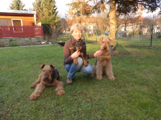 1,2,3x Airedale-Glück